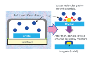 Fig. 10. The Mechanism of Moisture-Mediated Particle Adhesion